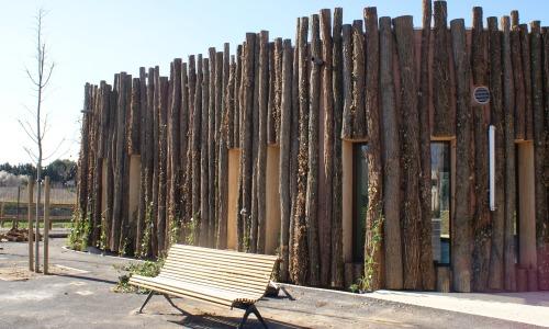 Arboretum de Lunel C. Souche